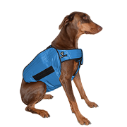 Product image for TechNiche® Phase Change Cooling Dog Coats