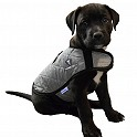 Product image for TechNiche® Evaporative Cooling Dog Coats